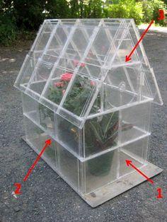 Haz un invernadero usando cajas transparentes de Cds ~ lodijoella