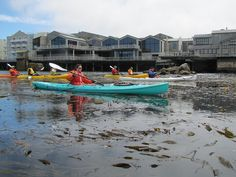 Beautiful Cannery Row in the background of kayakers by SeeMonterey, via Flickr