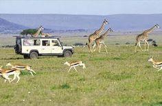 SPLENDOURS OF AFRICA TOURS : SPLENDOURS OF AFRICA SAFARI
