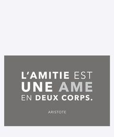 L'amitie est une ame en deux corps - Aristotle. Dimension: 20x30cm. Material: 100% Forex.
