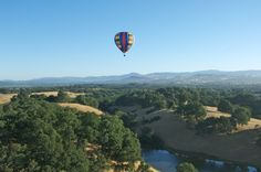 Hot air balloon over sonoma county...