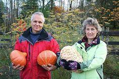 GMO engineer turns organic devotee (true story)