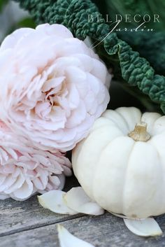 simply beautiful. pale pink roses and white pumpkins. i am in love.