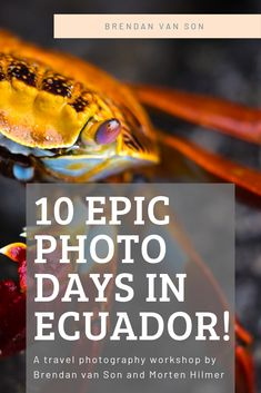 Join me on a photography tour of the Galapagos Islands
