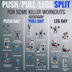 Desire for workout plans? Why not consider this fitness workout pin image reference 3576125995 immediately. Push Pull Workout Routine, Push Day Workout, Push Pull Legs Workout, Workout Splits, Gym Workout Tips, Workout Schedule, At Home Workouts, Workout Routines, Best Workout Split