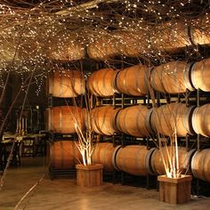 The Barrel Room--designed as a magical passageway from the cocktail space to the winery reception space