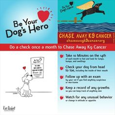 Be your dog's hero.
