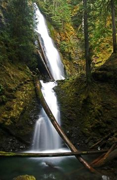 Murhut Falls. Photo by Lance McCoy. 1.5 mile roundtrip hike to Murhut Falls in Olympic National Park that is rated fairly easy.