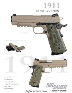 Tactical Life, Tactical Shotgun, Tactical Gear, Revolver, Handgun, Firearms, Armas Sig Sauer, Sig 1911, Shooting Equipment