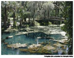Cool Bridge, Gemini Springs, DeBary, FL