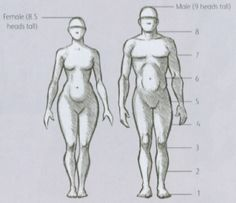 Figure Drawing Resources - videos/instruction online