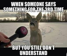 I promise I understand