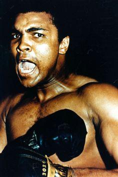 The man who has no imagination has no wings. -Muhammad Ali