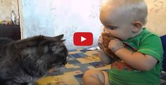 Baby and cat share a lovely moment over a croissant!