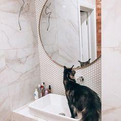 Umbra Hubba Wall Mirror | Shop Modern Round Mirrors Large Round Wall Mirror, Round Mirrors, Bathroom Wall Decor, Bedroom Wall, Mirror Shop, Washroom, Things That Bounce, Modern, Trendy Tree
