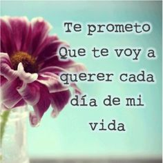 25 Best Frases D Amor 4 Images Qoutes Of Love Quotes Love Best