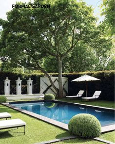 Gorgeous and timeless Hamptons pool and backyard.