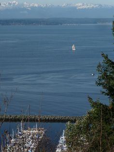 The View of Puget Sound and the Olympic Mountains, from Sunset Park