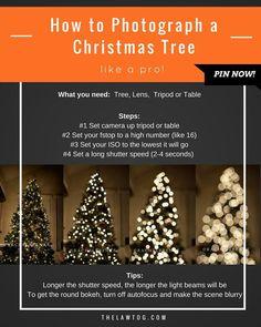 TUTORIAL: How to Photograph a Christmas Tree Like a Pro