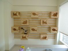 Hold on to your cats! This might be the coolest new concept I've seen in a while! I just received photos from the folks at Catswall Design of this brilliant new idea for a modular cat climbing wall. It's a set. Cool Cat Trees, Cool Cats, Cat Climbing Wall, Wall Shelving Units, Cat Shelves, Son Chat, Cat Perch, Regal Design, Cat Condo