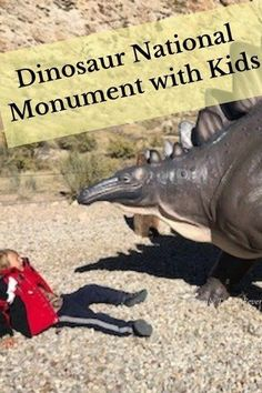 Our camping trip tp Dinosaur National Monument visitor center and quarry with kids Camping With Kids, Family Camping, Travel With Kids, Family Travel, Group Travel, Disney Vacations, Vacation Destinations, Traveling With Baby, Family Adventure