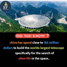 - All the Interesting Information You're Wondering Here Some Amazing Facts, True Interesting Facts, Interesting Facts About World, Intresting Facts, Unbelievable Facts, Interesting Information, Wow Facts, Real Facts, Wtf Fun Facts