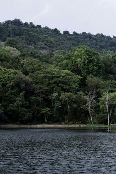 Selva Negra Lake, Matagalpa - Nicaragua