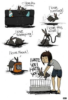 """""""Love-Hate Relationship"""" by Caroline B. (CabyCab @ DeviantArt.com), featuring her bunny Bambou (© 2011)."""