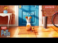 #Trailer Mascotas |