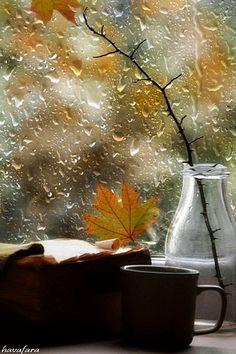 Books, tea and rain drops Beautiful Flowers Wallpapers, Beautiful Gif, Cozy Rainy Day, Rainy Night, Rain Wallpapers, I Love Rain, Rain Days, Autumn Rain, Rain Photography