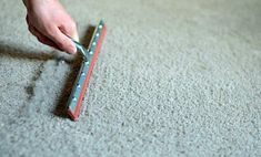 Carpet Cleaning Tips. Discover These Carpet Cleaning Tips And Secrets. You can utilize all the carpet cleaning tips in the world, and guess exactly what? You still most likely can't get your carpet as clean on your own as a pr Cleaning Area Rugs, Dry Carpet Cleaning, Carpet Cleaning Company, Best Carpet, Diy Carpet, Modern Carpet, Wool Carpet, Carpet Ideas, Cheap Carpet