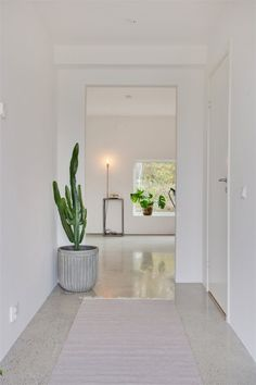 Polerad betongplatta (polished concrete floor). Fastighetsbyrån Bathroom Concrete Floor, Concrete Wall, Polished Concrete Flooring, White Concrete, Cement Floors, Concrete Patio, Terrazo, Home Decor Inspiration, House Entrance