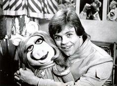 Luke and Piggy
