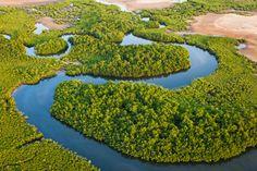 Voyage au coeur du Sine Saloum: Pourquoi une aire marine protégée?