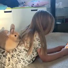 54 Ideas Funny Animals Eating Friends For 2019 Cute Funny Animals, Cute Baby Animals, Animals And Pets, Animal Pictures, Cute Pictures, Cute Baby Bunnies, Kawaii, Cute Creatures, Animal Memes
