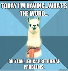 lexical retrieval problems