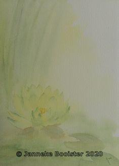 Water Lilies, Arches, Cobalt Blue, Watercolour, Van, Colours, Indian, Website, Yellow