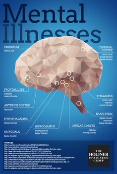Holiner Group Mental Illnesses Infographic - possible head injuries are nothing to poo-poo