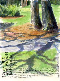 South Carolina Low Country Nature Journaling and Art