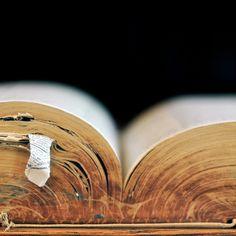 ...an open book -- Elle Moss...