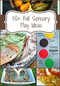 50+ Fall Sensory Play Ideas: Kid's Co-op from Reading Confetti