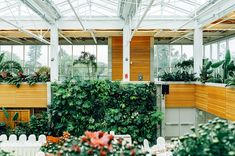 One of our favorite office design trends might jus - Jardin Vertical Fachada Easy To Grow Houseplants, Easy Plants To Grow, Growing Plants, Jardim Vertical Diy, Vertical Garden Diy, Vertical Gardens, Front Gardens, English Cottage, Office Plants