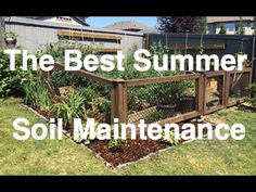 5 Easy Organic Tips for Soil Maintenance to continue your Amazing Harvests!