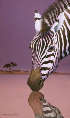 Michel Plaisir | Striped Narcissus