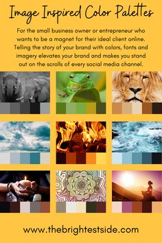 For the small business owner or entrepreneur who wants to be a magnet for their ideal client online. Telling the story of your brand with colors, fonts and imagery elevates your brand and makes you stand out on the scrolls of every social media channel.