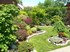 Zone 6 garden on a small lot where they've created a charming garden of dwarf Japanese Maples and bonsai. Charming.