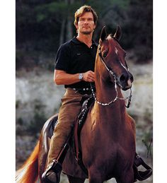 patrick swayze tammen poster | Patrick Swayze and his horse Tammen » All the Creatures