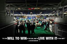 ill always love Louisville the most and the show ring even more <3