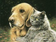 Golden Retriever & cat friend