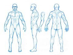 thought this might help out some peeps not perfectly realistic anatomy, but kinda the proportions i use enjoy -download for large view